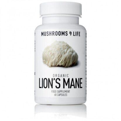 Lion's Mane Hericium erinaceus Capsules | Mushrooms4life