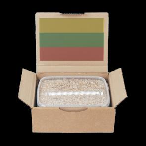 Magic Mushroom Grow Kit PES