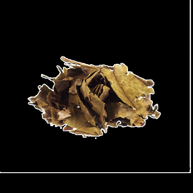 Chaliponga | Diplopterys Cabrerana - Herbs of the Gods