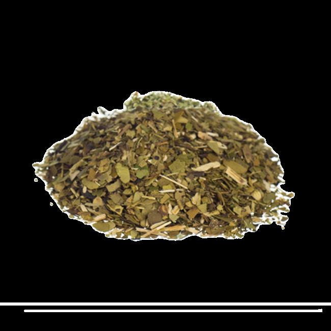 Yerba Mate | Ilex paraguariensis | Mate tea herbs