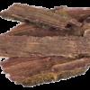 Jurema Preta | Mimosa hostilis - Herbs of the Gods